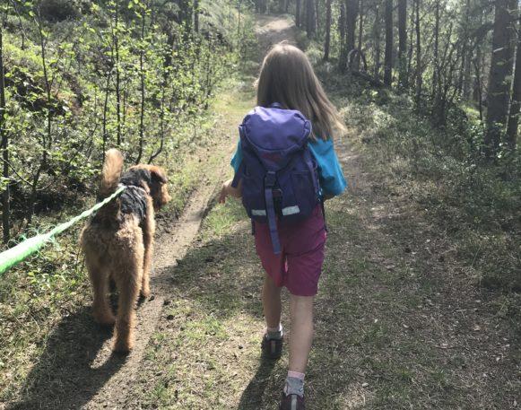 Hund og barn på fottur i skog etter traktorveg